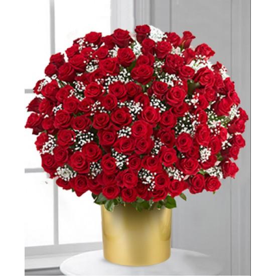 200 rosas rojas